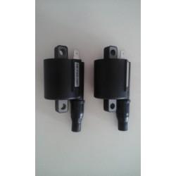 Bobine d'allumage haute tension Racing - Aprilia RS250 / Suzuki RGV250 - ZEELTRONIC high energy ignition coil ZEELTRONIC