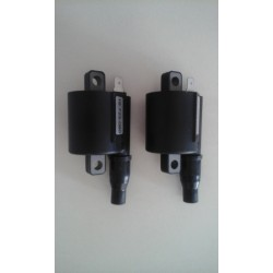 Bobine d'allumage haute tension Racing - ZEELTRONIC high energy ignition coil ZEELTRONIC